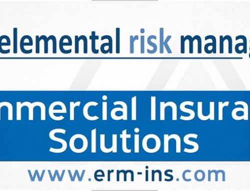 Member Monday | Elemental Risk Management